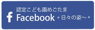 mego-facebook